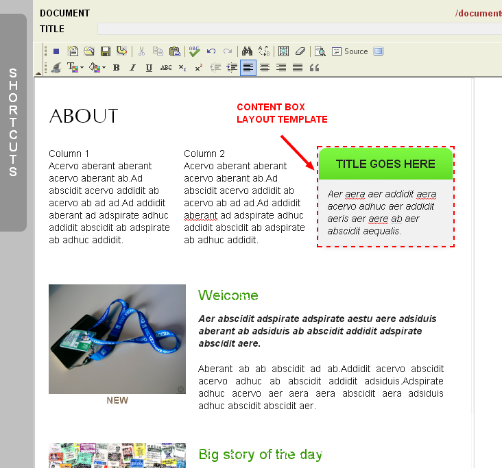An Example of Using Content Box Layout Templates in the Monkey Business Editor