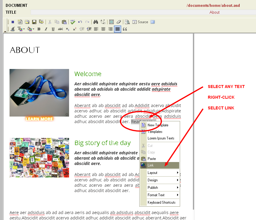 Creating text links in the Monkey Business editor